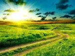 path through fields